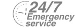 24/7 Emergency Service Pest Control in Collier Row, RM5. Call Now! 020 8166 9746